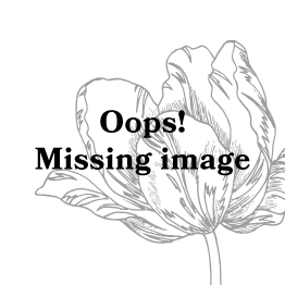 ESSENZA Dine Fleur Lange Hose Rot