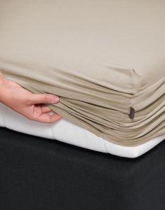 ESSENZA Premium Jersey Cement Spannbettlaken 140-160 x 200-220 cm