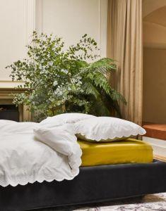 ESSENZA Premium Jersey Olive Spannbettlaken 180-200 x 200-220 cm