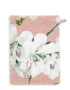 ESSENZA Rosalee Rose Waschhandschuhe 16 x 22 cm