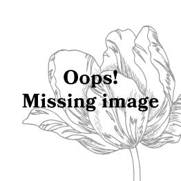 ESSENZA Carole Filou Kosmetiktasche Blumen Pfingstrosen Tulpen Caramel