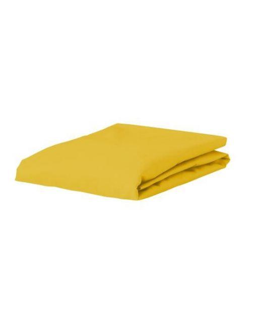 ESSENZA Premium Jersey Senfgelb Spannbettlaken 90-100 x 200-220 cm
