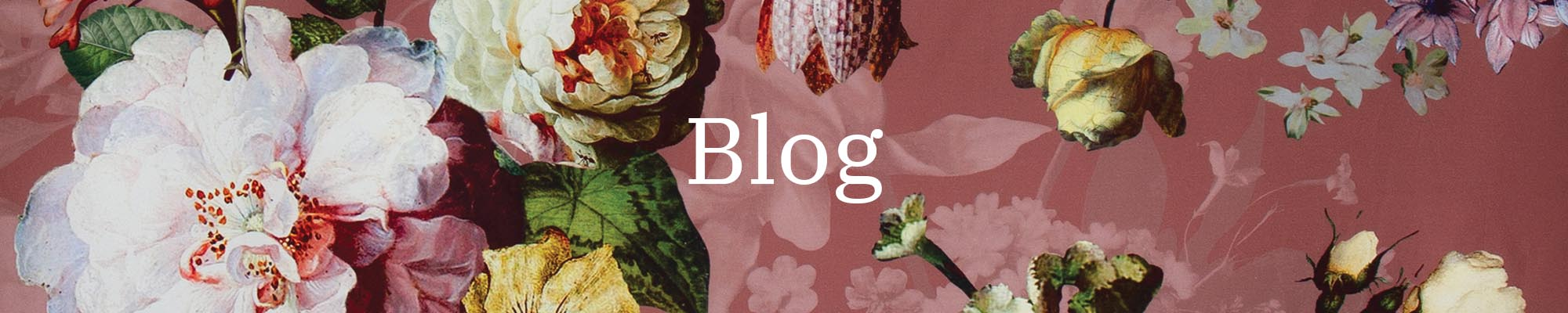 Blog Overview